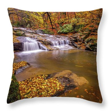 Waterfall-6 Throw Pillow
