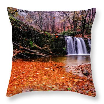 Waterfall-7 Throw Pillow