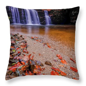 Waterfall-8 Throw Pillow