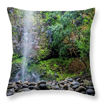 Waterfall And Flowers Throw Pillow
