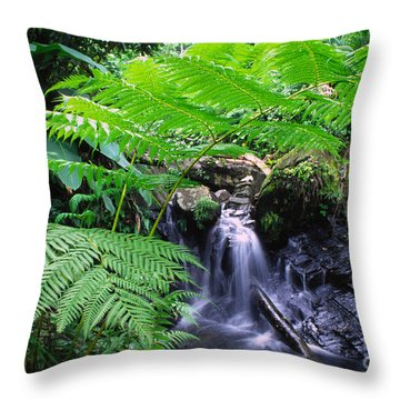 Waterfall And Tree Fern Throw Pillow by Thomas R Fletcher