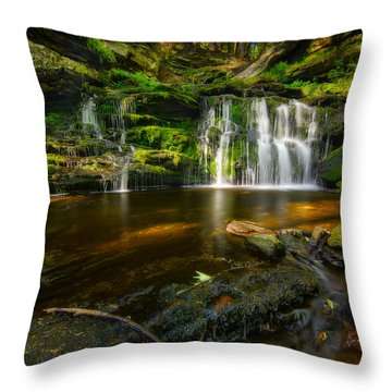 Waterfall At Day Pond State Park Throw Pillow by Craig Szymanski