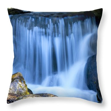 Waterfall At Dow Gardens, Midland Michigan Throw Pillow by Pat Cook