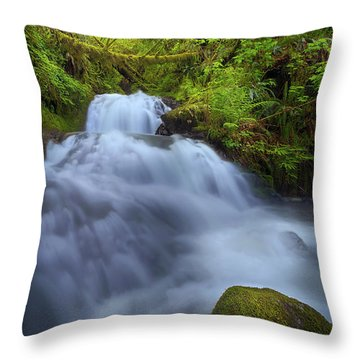 Waterfall At Shepperds Dell Falls Throw Pillow by David Gn
