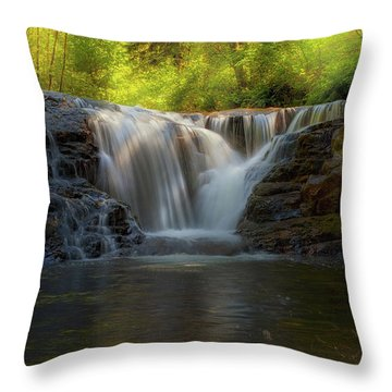 Waterfall At Sweet Creek Hiking Trail Complex Throw Pillow by David Gn