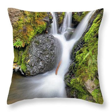 Waterfall Atop Wolf Creek Pass - Colorado - Nature Throw Pillow by Jason Politte