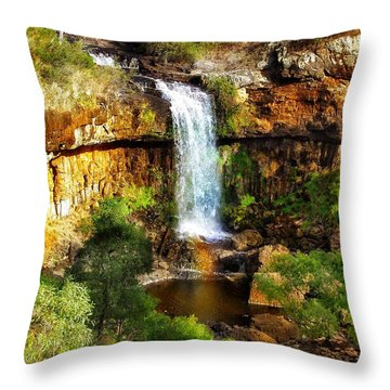 Waterfall Beauty Throw Pillow by Blair Stuart