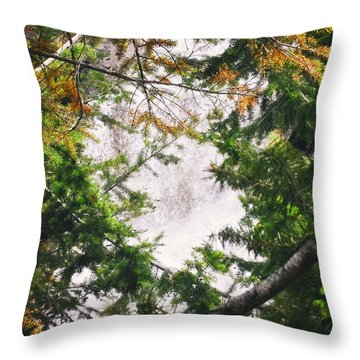 Waterfall Calling My Name Throw Pillow by Janie Johnson