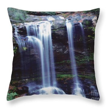 Waterfall  Throw Pillow by Debra Crank