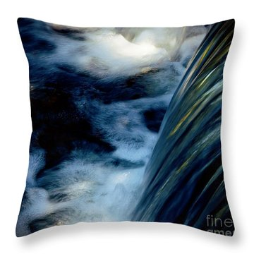Waterfall Throw Pillow by Elaine Manley