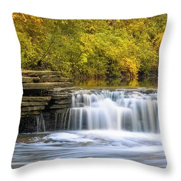 Throw Pillow featuring the photograph Waterfall Glen, Lemont, Il by Adam Romanowicz