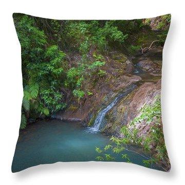 Waterfall Great Barrier Island New Zealand Throw Pillow