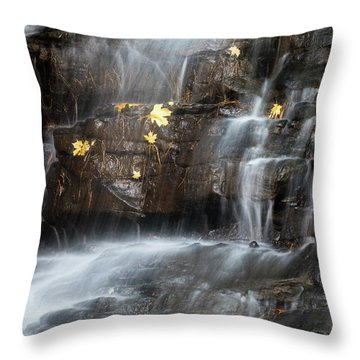 Falling Leaf Throw Pillows