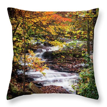 Throw Pillow featuring the photograph Waterfall Kaleidoscope  by Parker Cunningham