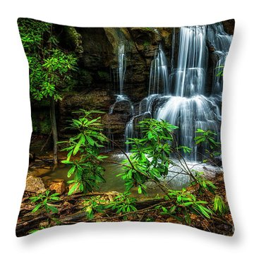 Throw Pillow featuring the photograph Waterfall On Back Fork by Thomas R Fletcher