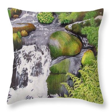 Waterfall On Skye Throw Pillow