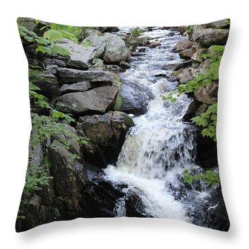 Waterfall Pillsbury State Park Throw Pillow