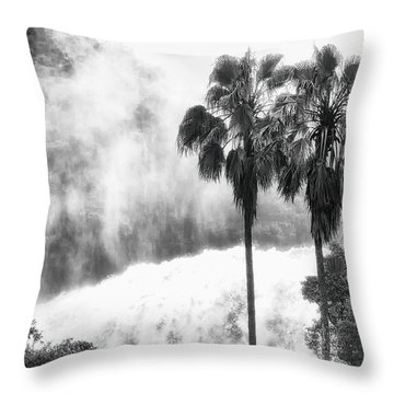 Throw Pillow featuring the photograph Waterfall Sounds by Hayato Matsumoto