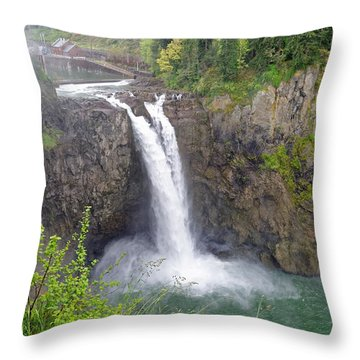 Waterfall Through The Mist Throw Pillow