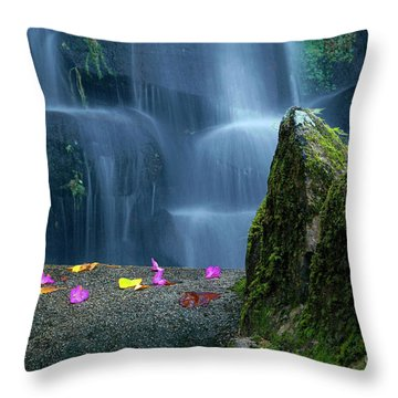Waterfall02 Throw Pillow by Carlos Caetano