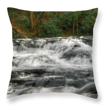 Waterfall03 Throw Pillow by Svetlana Sewell