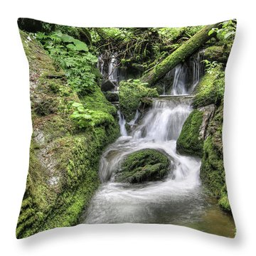 Throw Pillow featuring the photograph Waterfalls And Rapids On The White Opava Stream by Michal Boubin