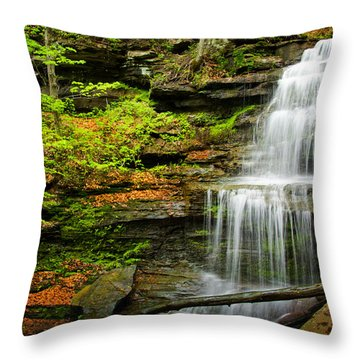 Waterfalls On Little Three Mile Run Throw Pillow