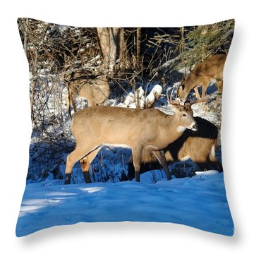 Waterhole Gathering Throw Pillow by Sandra Updyke
