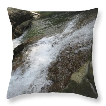 Throw Pillow featuring the photograph Watering Hole by Aaron Martens