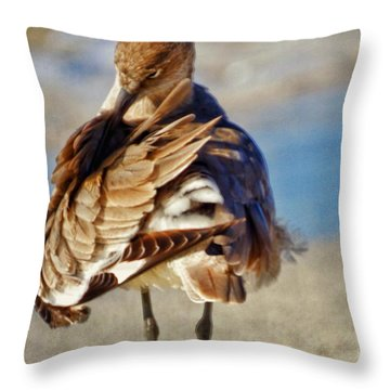 Waterless Bath Day Throw Pillow