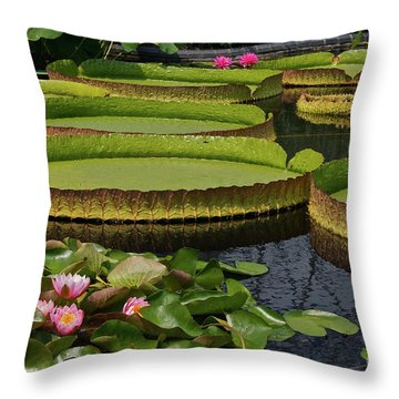Waterlilies North And South Throw Pillow