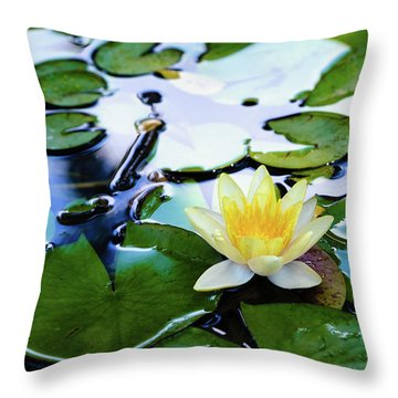 Waterlilly On Blue Pond Throw Pillow
