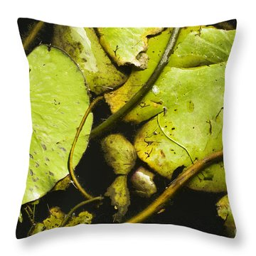 Waterlilly Plants Throw Pillow