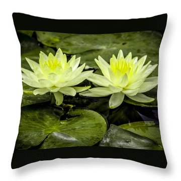 Waterlily Duet Throw Pillow