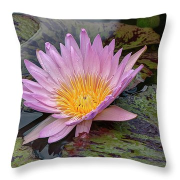 Waterlily Throw Pillow