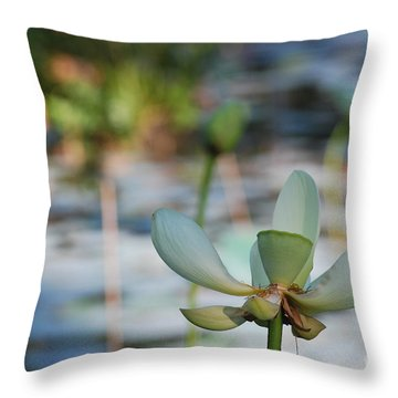 Waterlily Wash Horizontal Throw Pillow by Heather Kirk