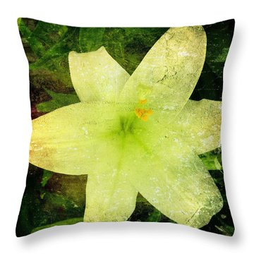 Waterlogged Throw Pillow