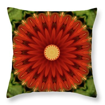 Watermelon Delight Throw Pillow by Sheila Ping