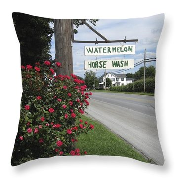Watermelon Horse Wash Throw Pillow