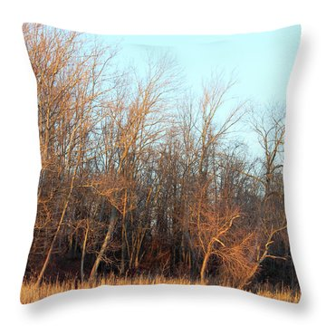 Waters Edge 2 Throw Pillow