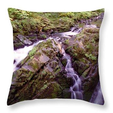Waterstreaming Throw Pillow