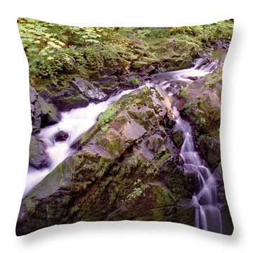 Waterstreaming Throw Pillow