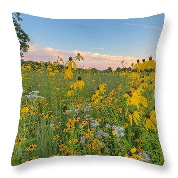 Prairie 1 Throw Pillow