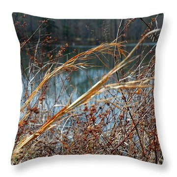 Waterway Throw Pillow