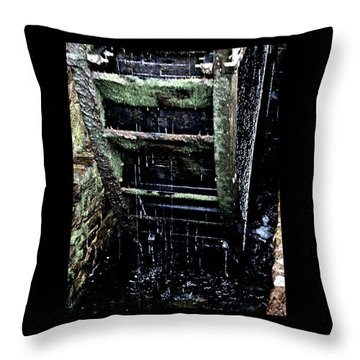 Waterwheel 1 Throw Pillow