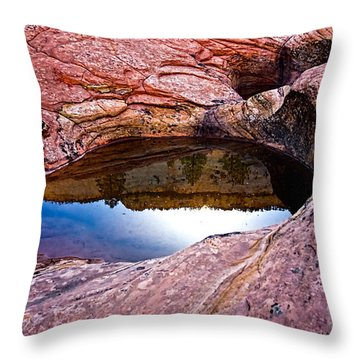Watery Portal Throw Pillow by Christopher Holmes