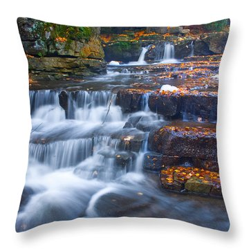 Watery Steps Throw Pillow