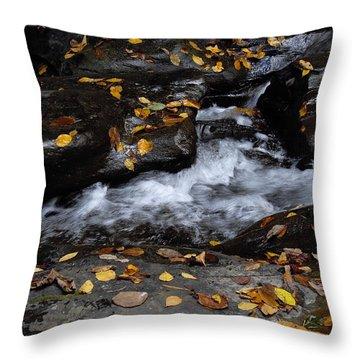 Watkins Glen 1 Throw Pillow by Vilas Malankar