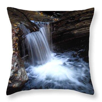 Watkins Glen 2 Throw Pillow by Vilas Malankar