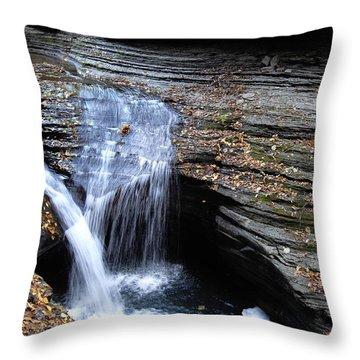 Watkins Glen 4 Throw Pillow by Vilas Malankar